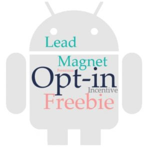 Opt-in Incentive, Lead Magnet, Opt-in Freebie